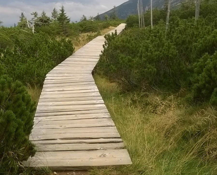 Góry z dziećmi - szlak na Szrenicę